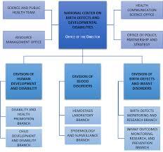 Cdc Organizational Chart Organizational Chart About Us Ncbddd Cdc