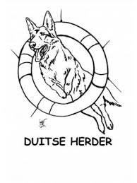 Duitse Herder Kleurplaat
