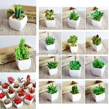 65 styles artificial succulents plant pots planters artificial plants with vase bonsai garden fake cactus diy home fl decor aaa508 canada 2019 from