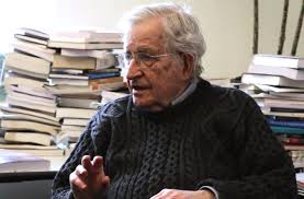 noam chomsky ecology ethics anarchism alternet