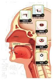 Start studying my phonetic korean alphabet. Design Lessons From The Korean Alphabet By Minzi Kang Medium