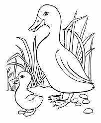 free coloring pages of animals and their babies worksheet for ...