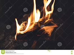 book burning in flames old memories vanished forever stock image image of life