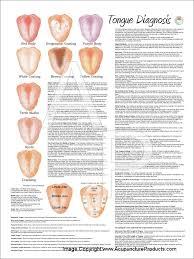 Chinese Medicine Tongue Diagnosis Poster Tcm Tongue
