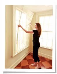 privacy window inserts