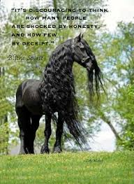 Black Beauty Quote Best of Pamela Leigh Richards Black Beauty Horse Quote Copy