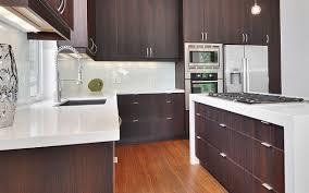 Contemporary Kitchen Cabinets Modern Kitchen Cabinets In - Contemporary kitchen colors