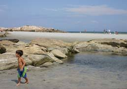 Wingaersheek Beach Tips Reviews Local Guide