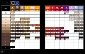 Paul Mitchell The Color Xg Color Chart July 2015