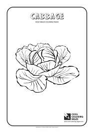 Cool Coloring Pages Plants Coloring Pages Cool Coloring Pages