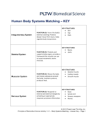 Tissue Chart Worksheet Answers Human Body Systems Matching Key