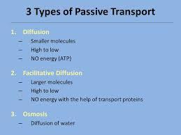 3 Types Of Passive Transport Passive Active Transport Ppt Video Online Download