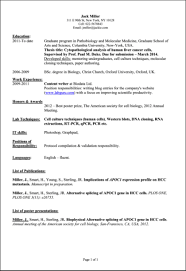 Computer Science Student Resume Template Ideas
