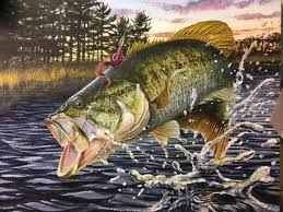 the largemouth bass watercolor by jonathan milo is called just hanging on