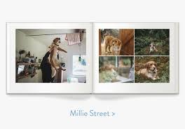 Animal Photo Albums How To Make The Perfect Pet Album Milk Books