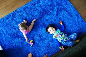 we bought a blue rug