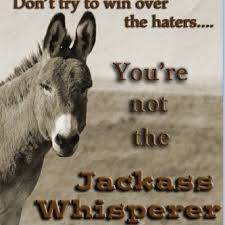 best quotes images words truths and quotes you re not the jack ass whisperer
