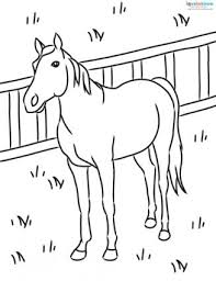 Small Picture Horse Coloring Pages to Print