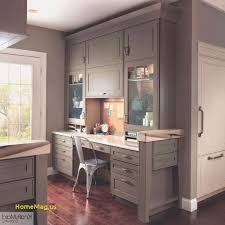 Modern cabinet refacing Divine Smart Cabinet Refacing Lowes Luxury Oak Kitchen Cabinets Lowes Elegant Fresh Kitchen Cabinets At Jackolanternliquors Cabinet New Cabinet Refacing Low Myutopiarecordings