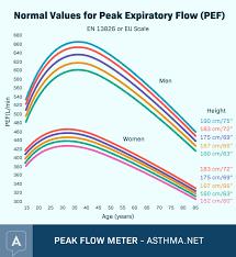 Peak Flow Meter Chart Peak Flow Tracking Chart Diagram Meter For Asthma Pdf