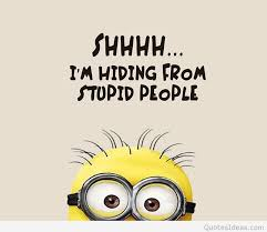 Stupid Quotes Extraordinary Funny Minions Stupid People Quote