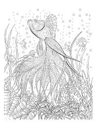 Crafts Oceana Adult Coloring Book