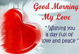 Love Good Morning Quotes Image 4040 APK Download Android Custom Peace Love Quotes Download
