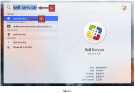how to install microsoft office on mac install microsoft office 2016 on mac it help