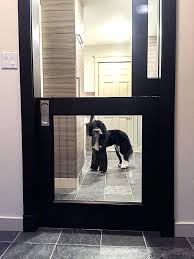 dog friendly laundry mudroom kennel space with glass dutch pocket dog friendly laundry mudroom kennel space