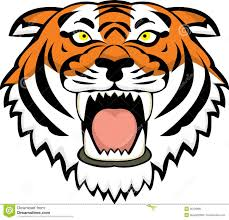 tiger face drawing tigers at getdrawings free for personal use 1300x1251