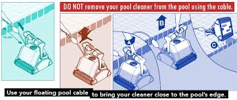 best commercial pool cleaner dolphin prox2 more chainsaw journal diagram removing dolphin from pool