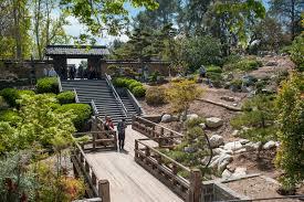 japanese garden at huntington reopens