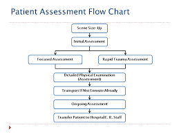 Fire And Rescue Academy Patient Assessment Flow Chart Ppt