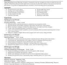 Sample Resume Account Executive Account Manager Resume Sample Insurance Account Manager Resume