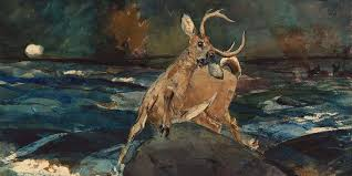 p hunting poems 2x1 1200 q20 jpg