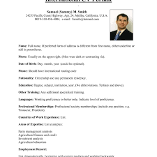 Better Resume Examples Of Resumes Cover Letter Common Resume Format Sample 14