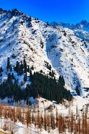 winter mountain backgrounds. Unique Backgrounds Almaty Kazakhstan Snow Winter Mountain Background Medeo Stock Photo   97903654 Throughout Winter Mountain Backgrounds U