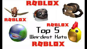 I really want the hedgemaze hat. Top 5 Weirdest Hats On Roblox Youtube