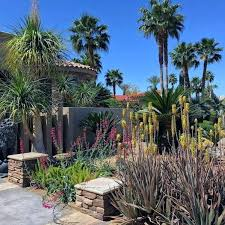 Desert Backyard Designs Simple Desert Landscape Ideas For Front Yard Yard Desert Landscaping Ideas