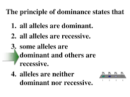 principle of dominance ppt biology powerpoint presentation id 3815204