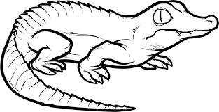 Small Picture Image Gallery of Baby Crocodile Coloring Pages