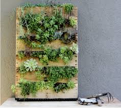 Pallet living wall