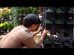 Small Picture Installation of Drip Irrgation System for Vertical Gardens YouTube