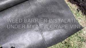 WEED BARRIER FABRIC HOW TO INSTALL 6 17 12 YouTube
