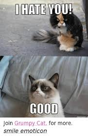 grumpy cat good smile. Perfect Cat Cats Grumpy Cat And Good I HATE YOU GOOD Join Cat Intended Good Smile G