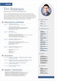 Best Professional Cv Format Professional Cv Template Free Best Of Free Modern Resume