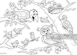 In De Dierentuin Schattige Bos Dieren Forest Vogels Illustratie Voor
