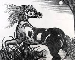 wild horse drawings in pencil. Interesting Wild Wild Drawing  Horse By Bob Crawford Inside Drawings In Pencil H