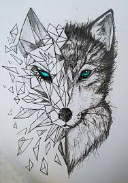 Cool Animal Drawings At Paintingvalley Com Explore