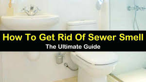 damp smell in bathroom how to get rid of sewer smell mold smell bathtub drain